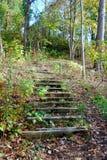 Escaleras que van para arriba una colina en el bosque. foto de archivo