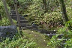 Escaleras rústicas Imagen de archivo libre de regalías