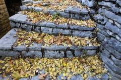 Escaleras viejas en el parque cubierto con las hojas de arce amarillas Otoño concentrado Imagen de archivo