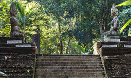 Escaleras viejas en el templo antiguo Chiang Mai, Tailandia Imagen de archivo