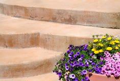 Escaleras y flores coloridas Fotografía de archivo libre de regalías