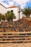 Escaleras y palmeras de piedra. imágenes de archivo libres de regalías