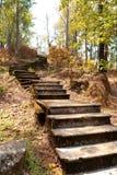 Escalier à la montagne Photographie stock libre de droits