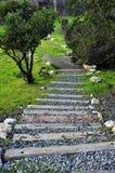 Escalier à la nature Photos stock
