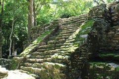 Escalier à une ruine maya antique dans Quintana Roo, Mexique image libre de droits