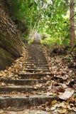 Escalier au ciel Photos libres de droits