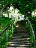 Escalier au jardin Image stock