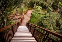 Escalier au point de vue scénique, parc national de Taroko Photo libre de droits