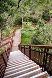 Escalier au point de vue scénique, parc national de Taroko Images libres de droits