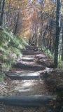 Escalier céleste Photographie stock