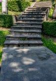 Escalier concret en parc Image stock