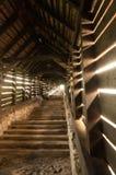 Escalier couvert Photo libre de droits