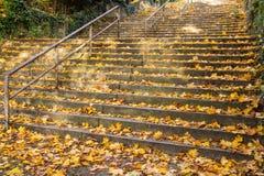Escalier d'automne Photo libre de droits