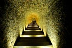 Escalier d'une cave Photos libres de droits
