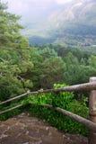 Escalier dans la forêt de montagnes photos stock