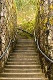 Escalier dans la mousse photos stock