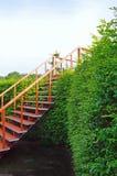 Escalier dans la nature Image stock