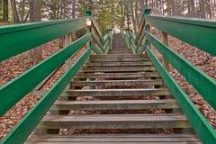 Escalier de Dorwin Images stock