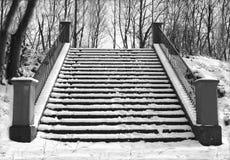 Escalier de l'hiver photographie stock libre de droits
