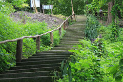 Escalier de la Thaïlande Asie Image stock