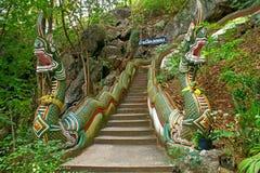Escalier de Nage Photo stock