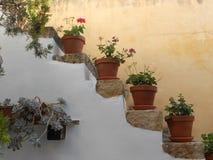 Escalier de Rhodes orné avec des fleurs Photos stock