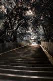Escalier de tombeau photographie stock