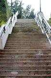 Escalier dehors en parc Photo libre de droits