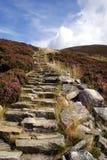 Escalier des montagnes Images libres de droits