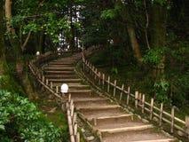Escalier en bambou image libre de droits