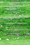 Escalier en bois Image libre de droits