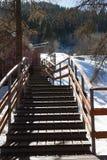 Escalier en bois parmi des arbres images stock