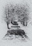 Escalier en hiver Photo stock