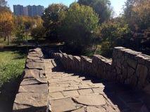 Escalier en parc d'automne image stock