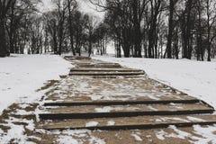 Escalier en parc de ville en hiver photographie stock libre de droits