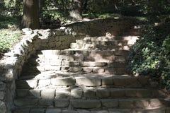 Escalier en pierre dans la forêt Images libres de droits