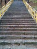 Escalier en pierre humide Image stock