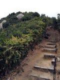 Escalier en pierre vers le dessus photos libres de droits