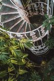Escalier en spirale dans la Chambre de paume, jardins de Kew en hiver/automne photo stock