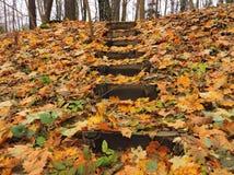 Escalier et lames d'automne Photographie stock