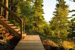 Escalier extérieur dans les bois Photos stock