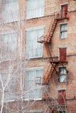 Escalier externe de sortie de secours sur un vieil immeuble de brique d'usine, usine Les grandes fenêtres, des arbres de bouleau  Photographie stock libre de droits