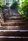 Escalier gris en pierre amenant au jardin avec les usines exotiques en Turquie Sun photo stock