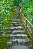 Escalier japonais de pierre de jardin Photo libre de droits