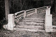 Escalier monumental abandonné en bois envahis image libre de droits