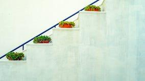 Escalier peint blanc avec des pots de fleur sur les lignes géométriques de chaque étape photos libres de droits
