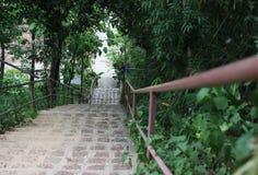 escalier pour la marche Photographie stock