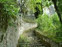 Escalier ruiné Photo stock