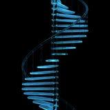 Escalier transparent rendu de rayon X bleu Images stock