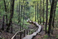 Escaliers à l'inconnu, Sigulda, Lettonie Image stock